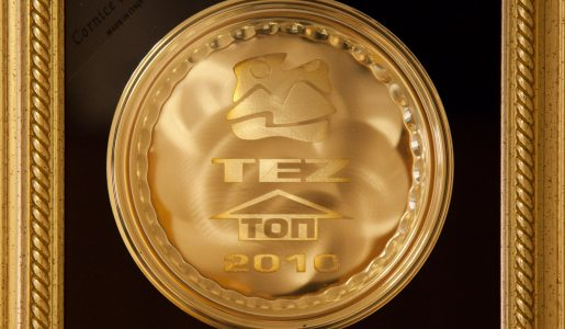TEZ Гарант 2010 — Виста Челябинск