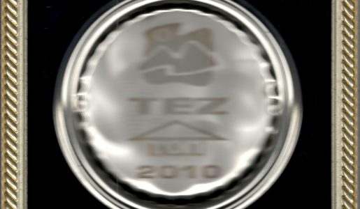 TEZ Garant 2010